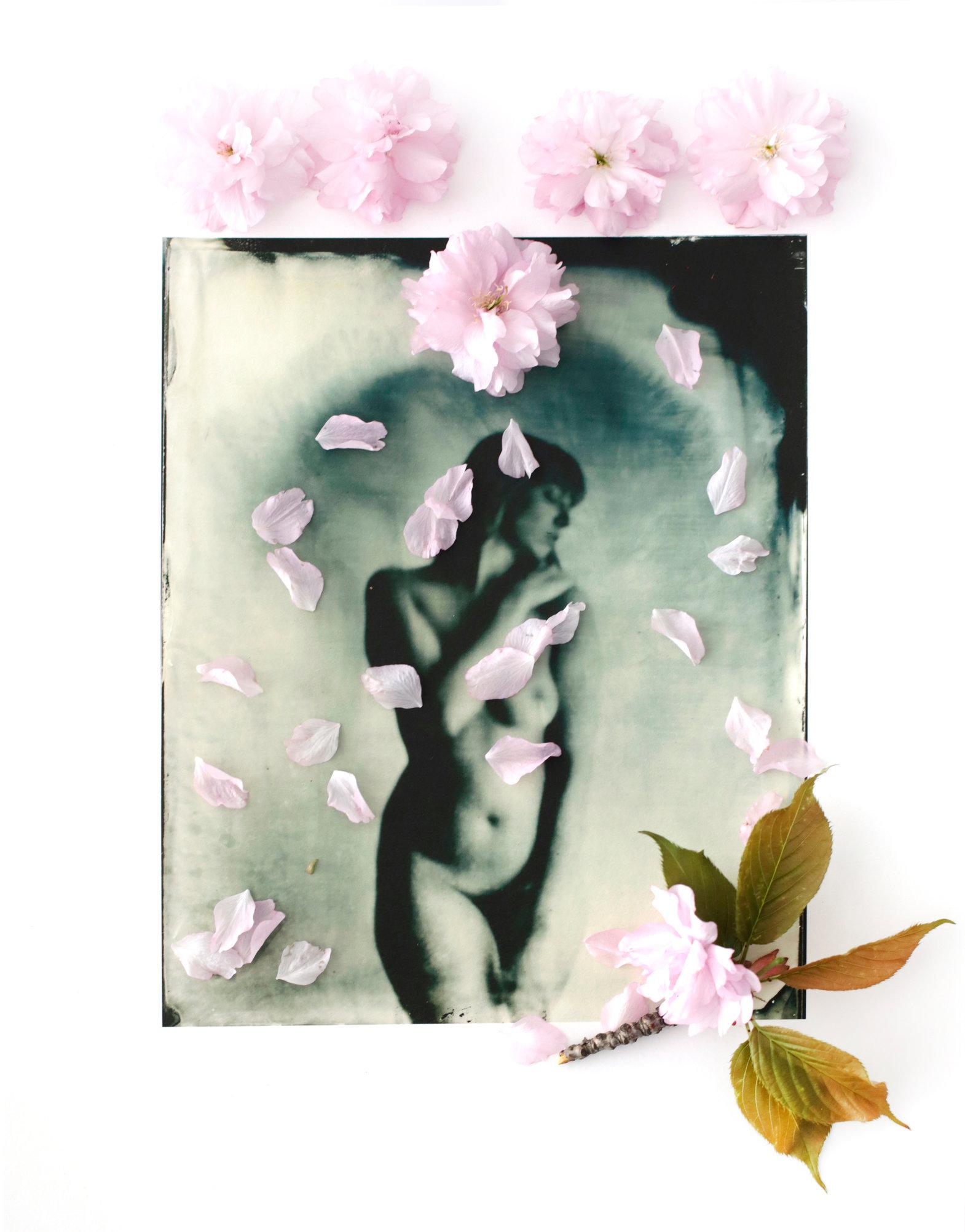 FLOWERS_1_053.JPG