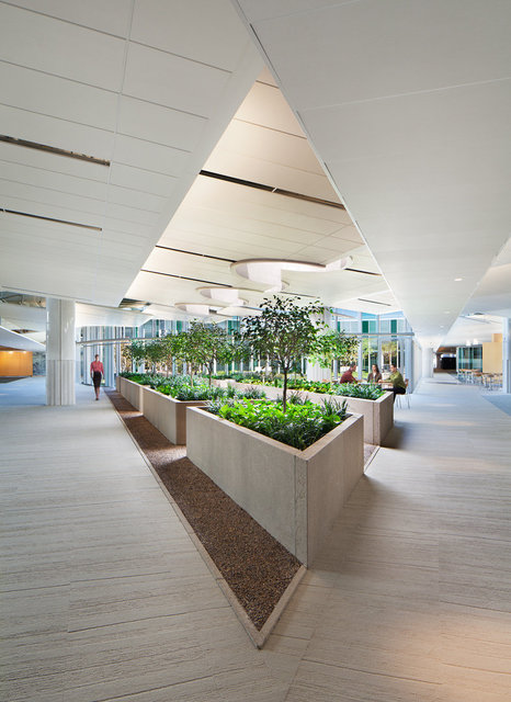 GSA Federal Building by Jonathan Levi Architects