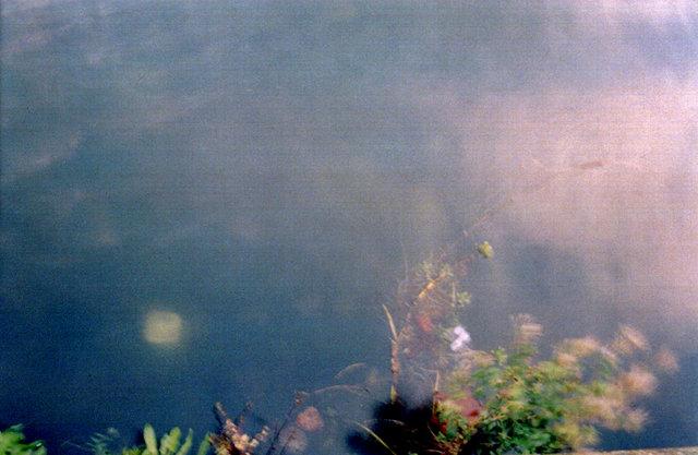 Nwatercolor29.jpg