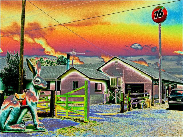 Jack Rabbit 76