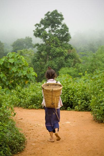 Laos but not Forgotten