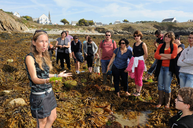 Ouessant, Ondine Morin, guide nature