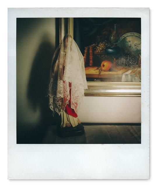 049_Polaroid SX70_IMG_2783.jpg