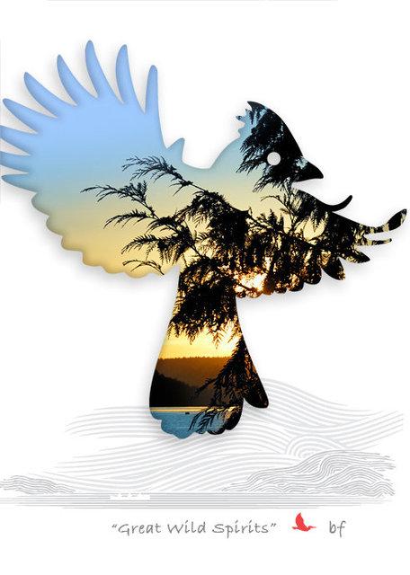 bird-06a.jpg