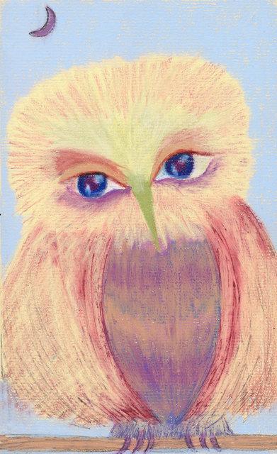 Gentle Owl