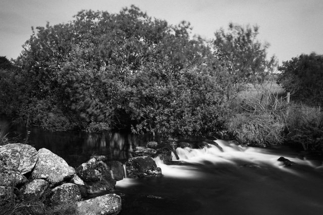 BW East Dart River.jpg