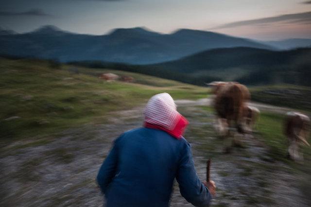 shepherds_019.jpg