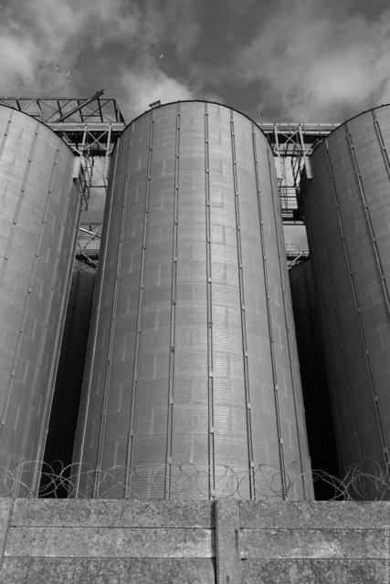 SGS UK Grain Terminal, Grays, Essex