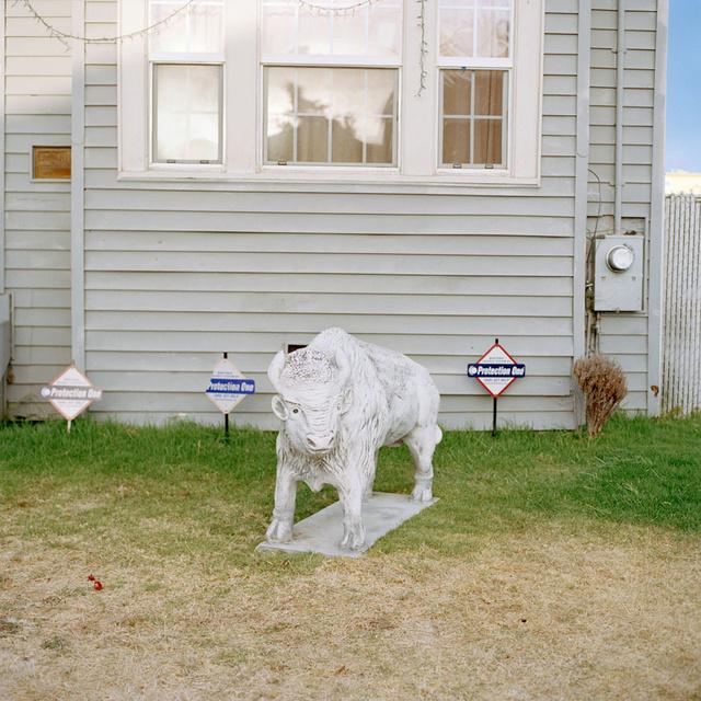 Bull_Yard.jpg