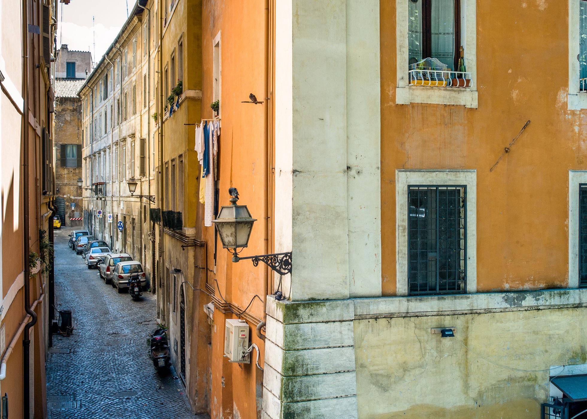 Rome-1000107.jpg