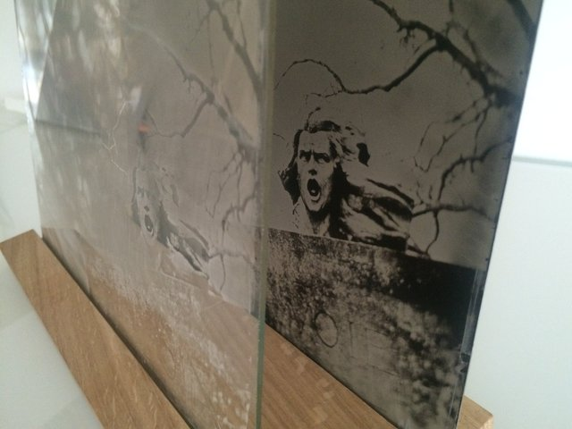Installation-VERDUN IN MEMORIAM-collodion-012.JPG