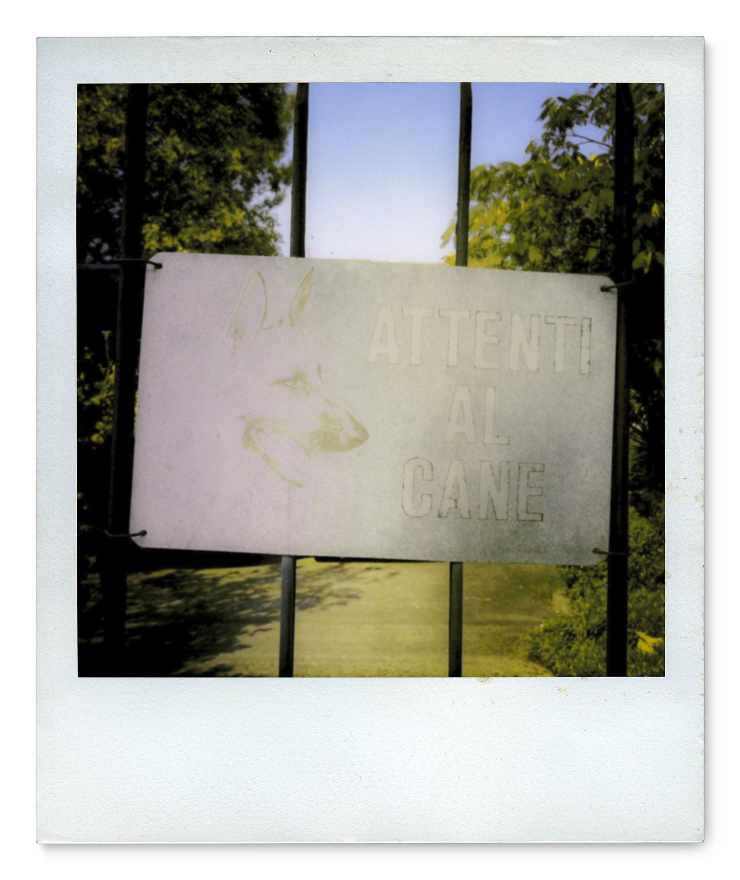 003_Polaroid SX70_IMG_2477.jpg