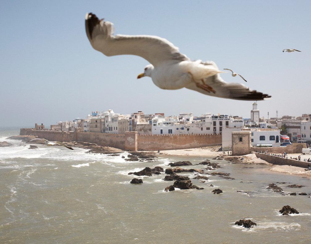 alex_troesch_docu_EssaouiraGnawa_210.jpg