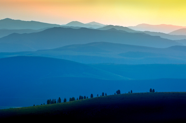 Dundenberg Meadows