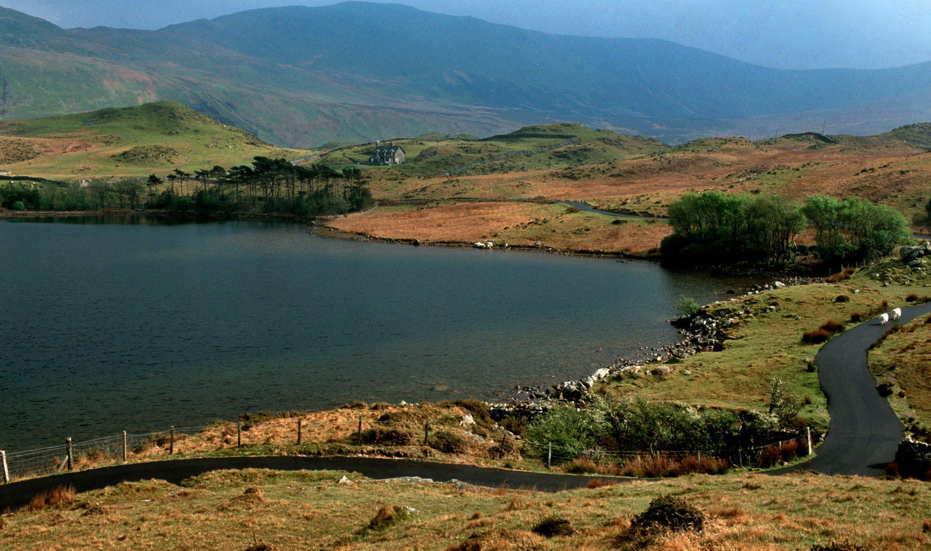Tal-y-Llyn-Lake, au pied du Cadair Idris,National Park,2000.