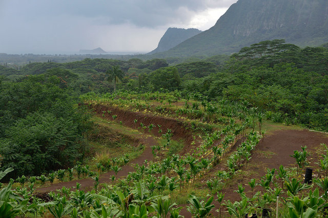 Waimanalo land on Oahu leased by Hawaiian sovereignty movement