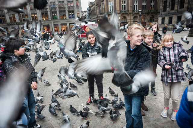 20121109-Duivendam.jpg