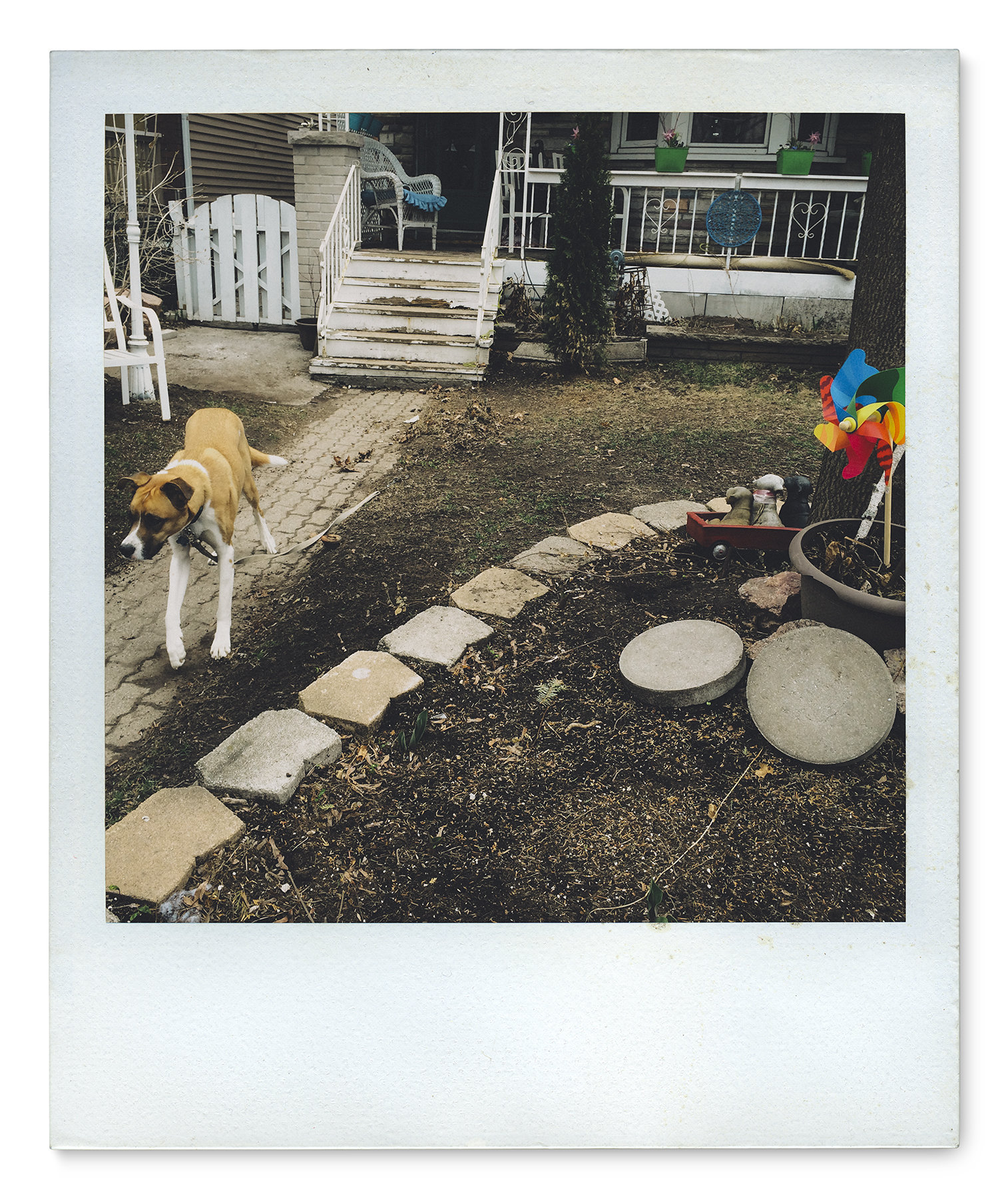 065_Polaroid SX70_IMG_8278.jpg
