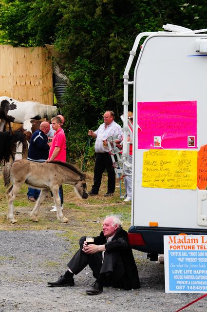 Horse Fair, Spancilhill, Ennis