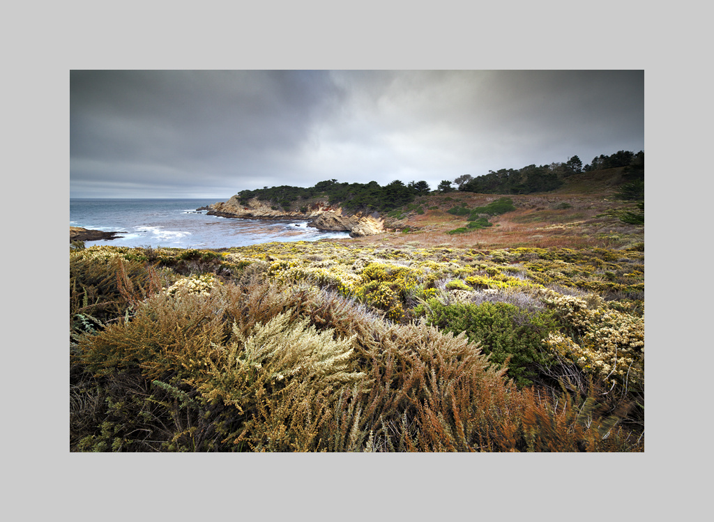 Point Lobos SNR