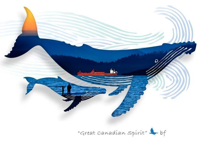 Whale-01.jpg