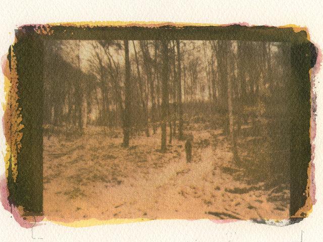 Allein im Kyffhauser Wald
