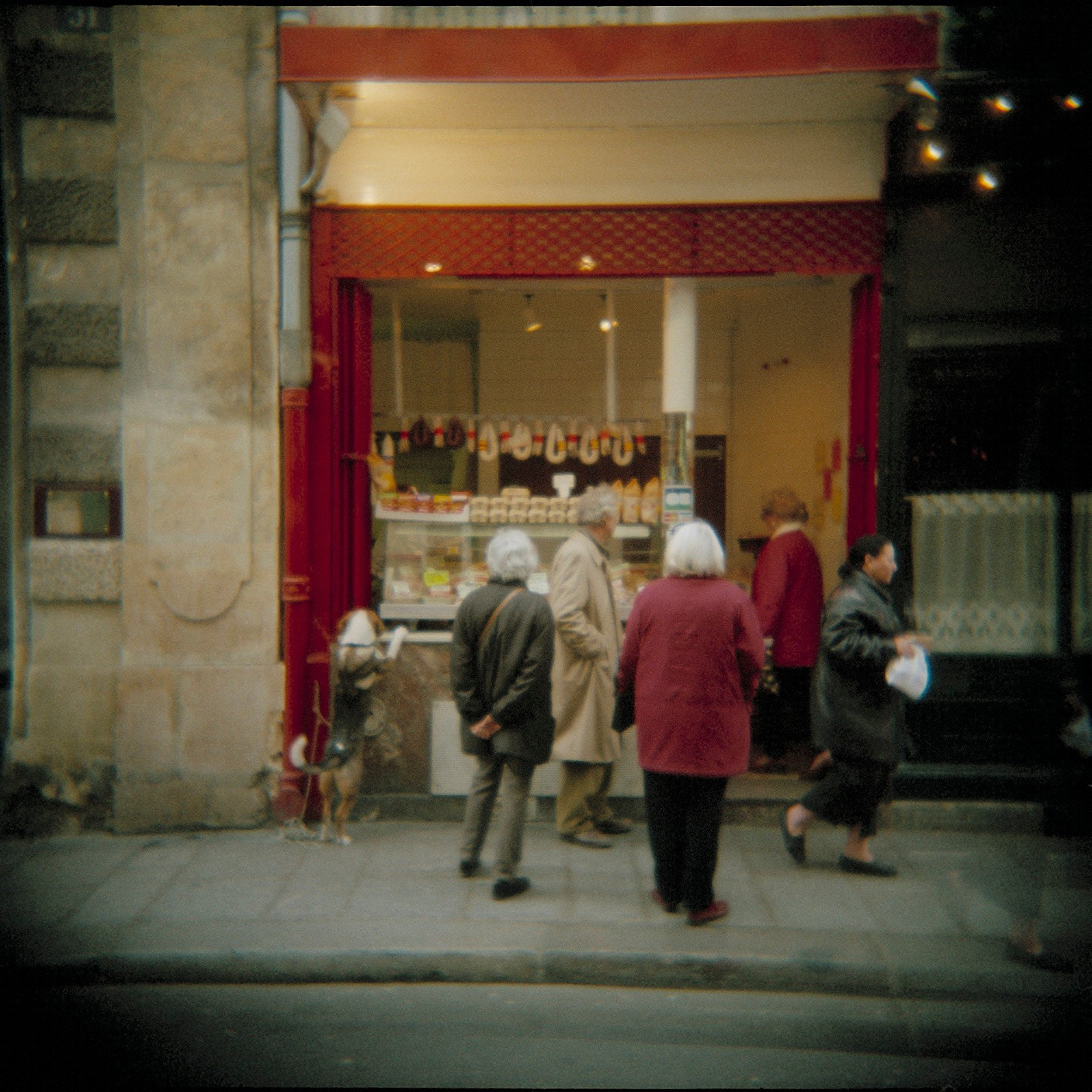 Holga France 70 #01-03_#3_DogButcherWindow