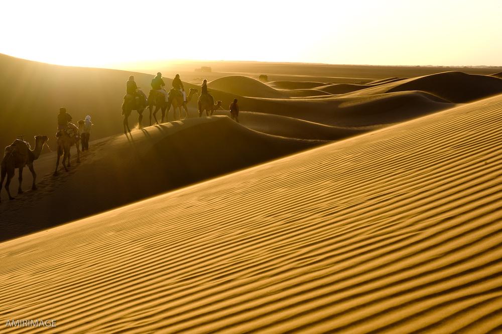 Shiva_morocco-1028.jpg
