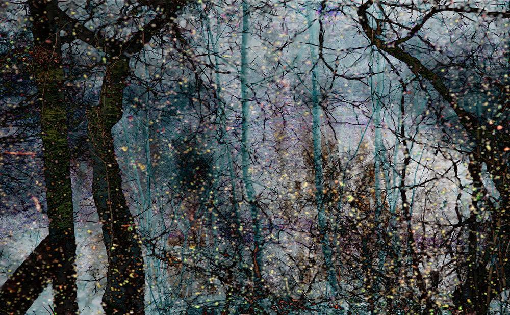 Czarcie bagno III, vigrafia 070