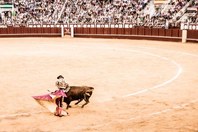 The Bullfight-195-bewerkt.jpg