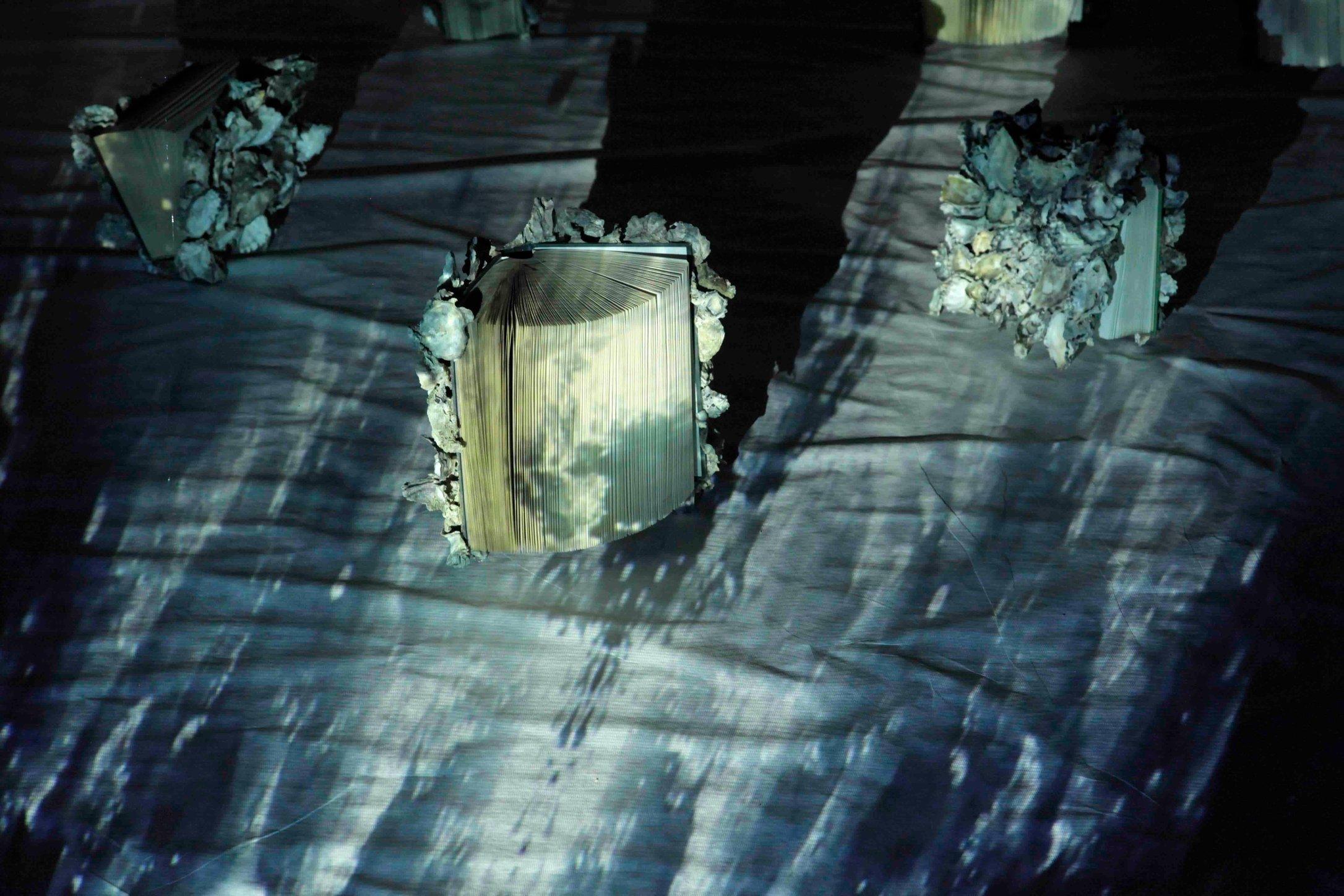 Jenny Pollak - The Immortals - installation detail (video still with sculptural element) 2.jpg