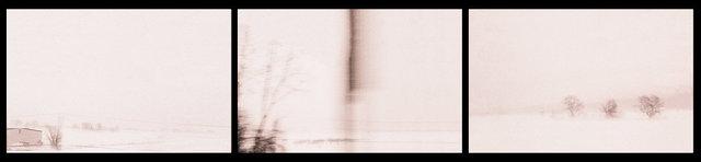 Snow Storm Triptych