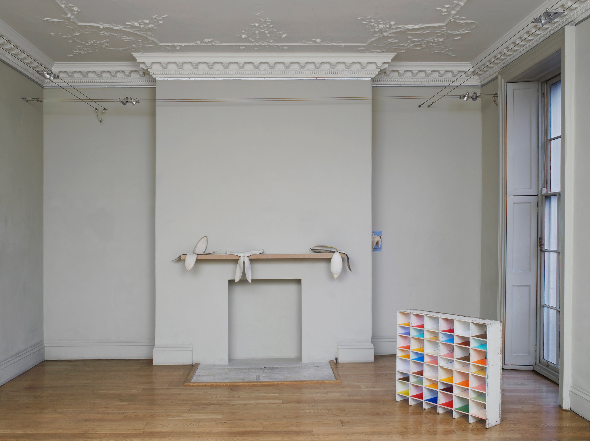 nicky-hirst-real-size-domobaal-mod-19.jpg