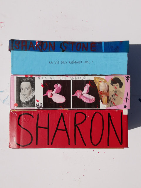 Overview of the Sharon Stone Special Editions