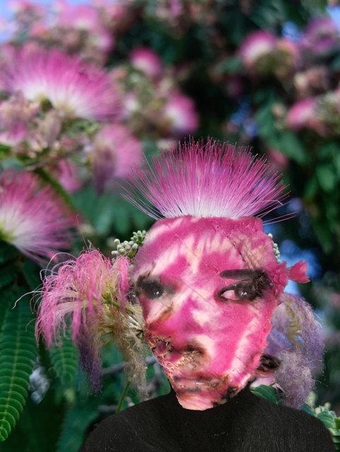landshape roze.jpg