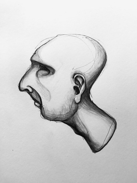 Heads_side_07.jpg