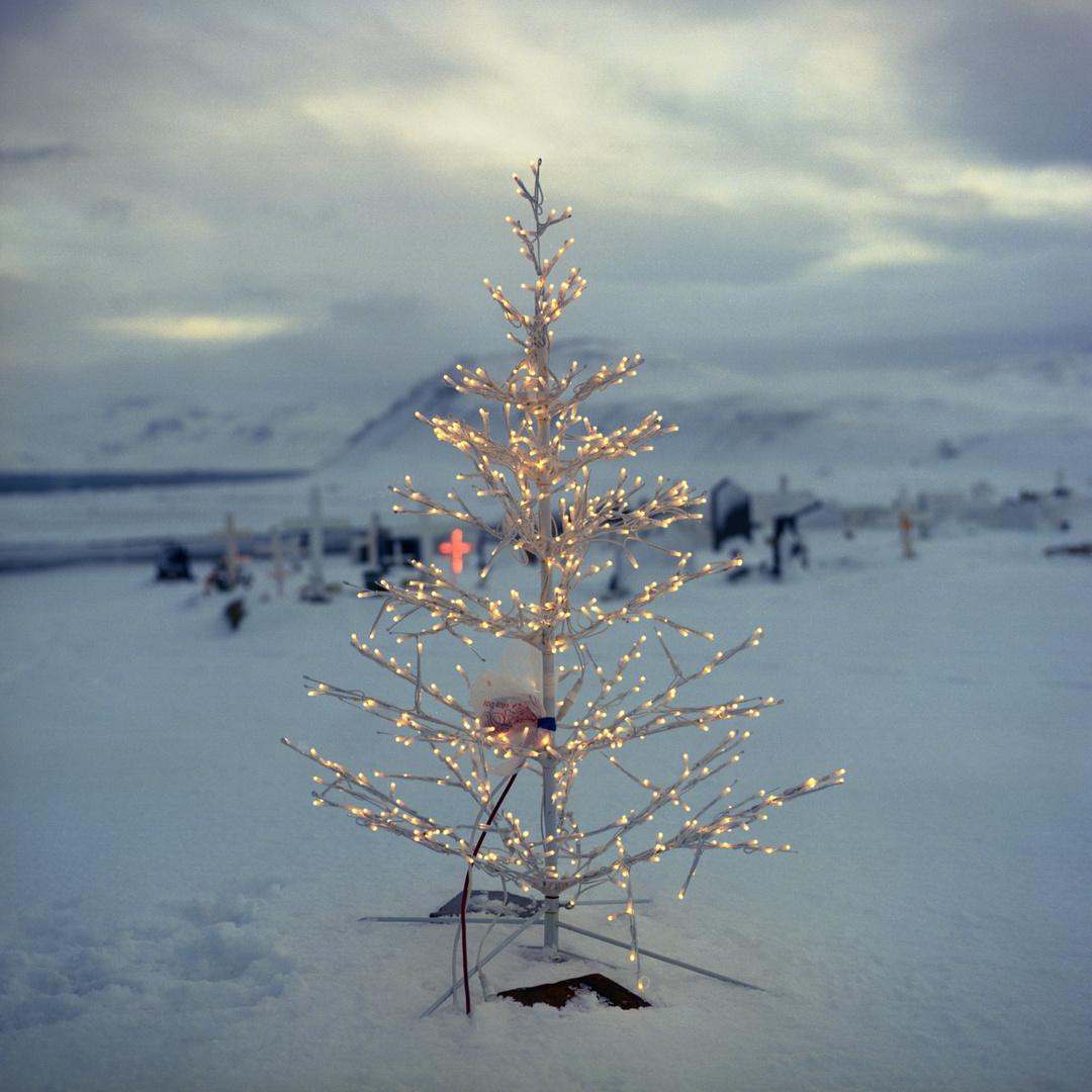 Iceland - Rif