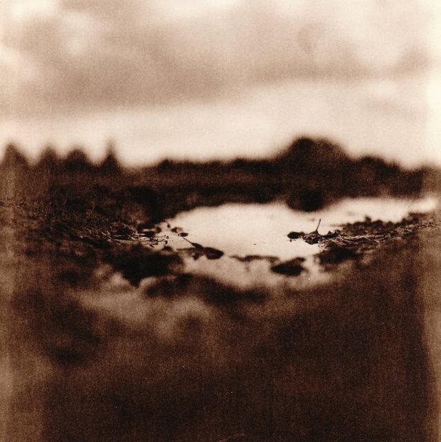 landscapes_05.jpg