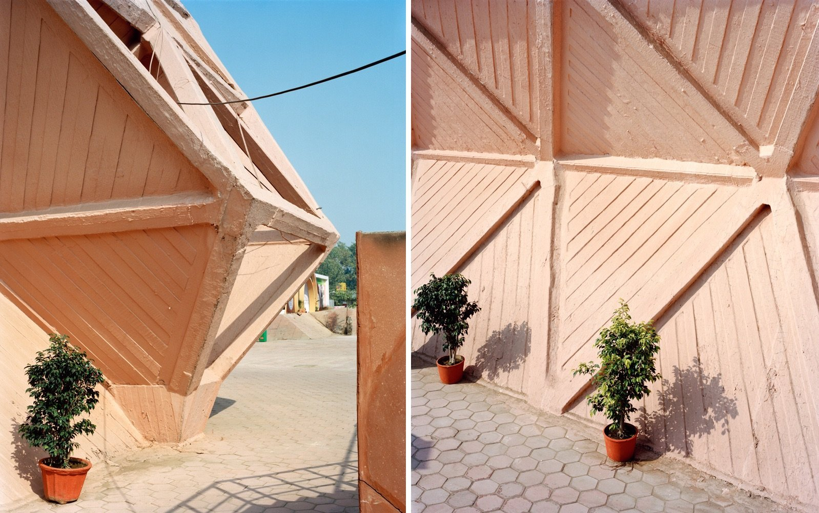 151115_HoN-triangles-w-plants.jpg
