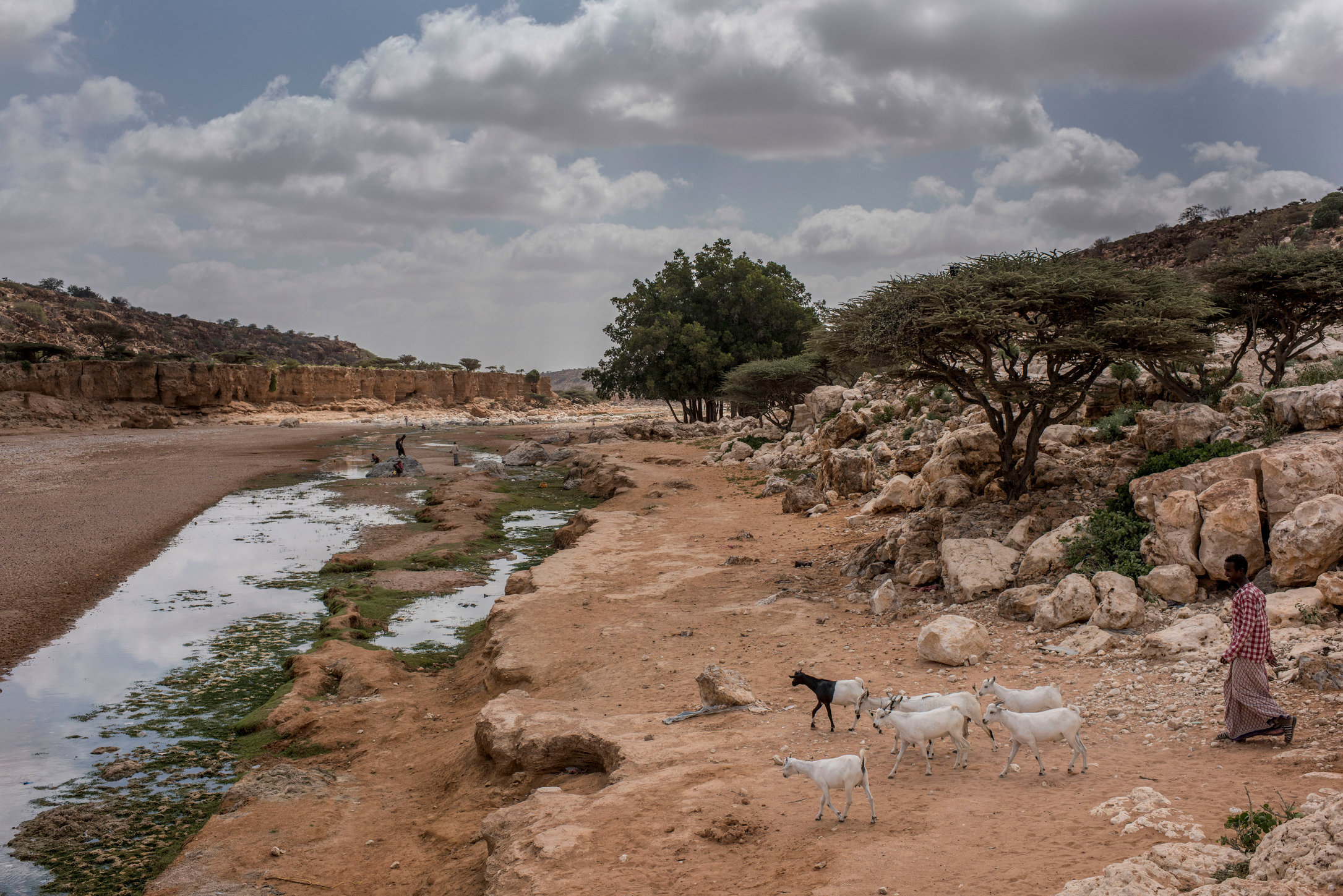 SomaliaDrought_AR01.jpg