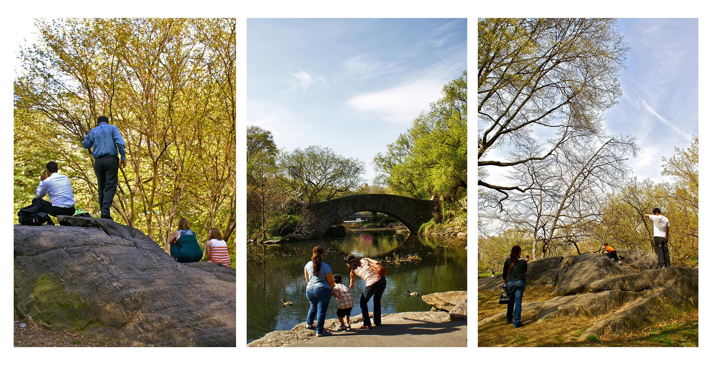 CDM_central_park2010_2.jpg