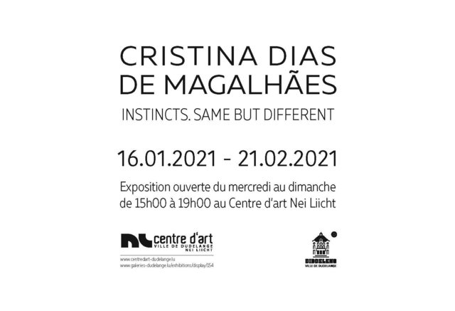 EXHIBITION / EXPOSITION @ Centre d'Art Nei Liicht 16.01.2021-21.02.2021
