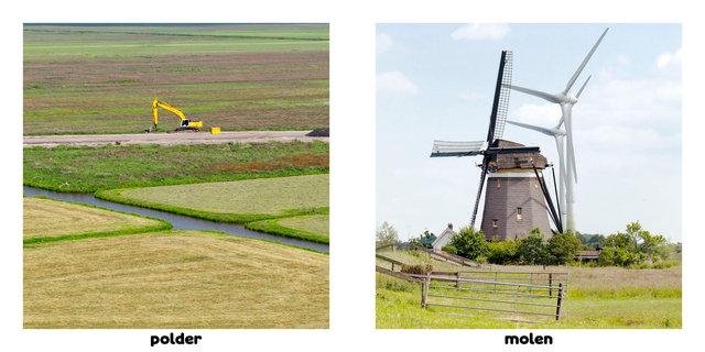 6 hollandsedingen 02.jpg