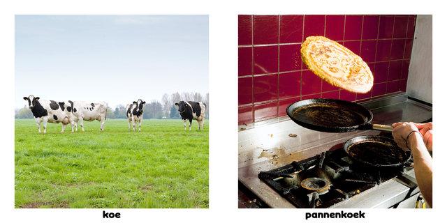 6 hollandsedingen 12.jpg