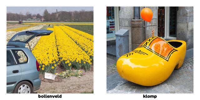 6 hollandsedingen 24.jpg