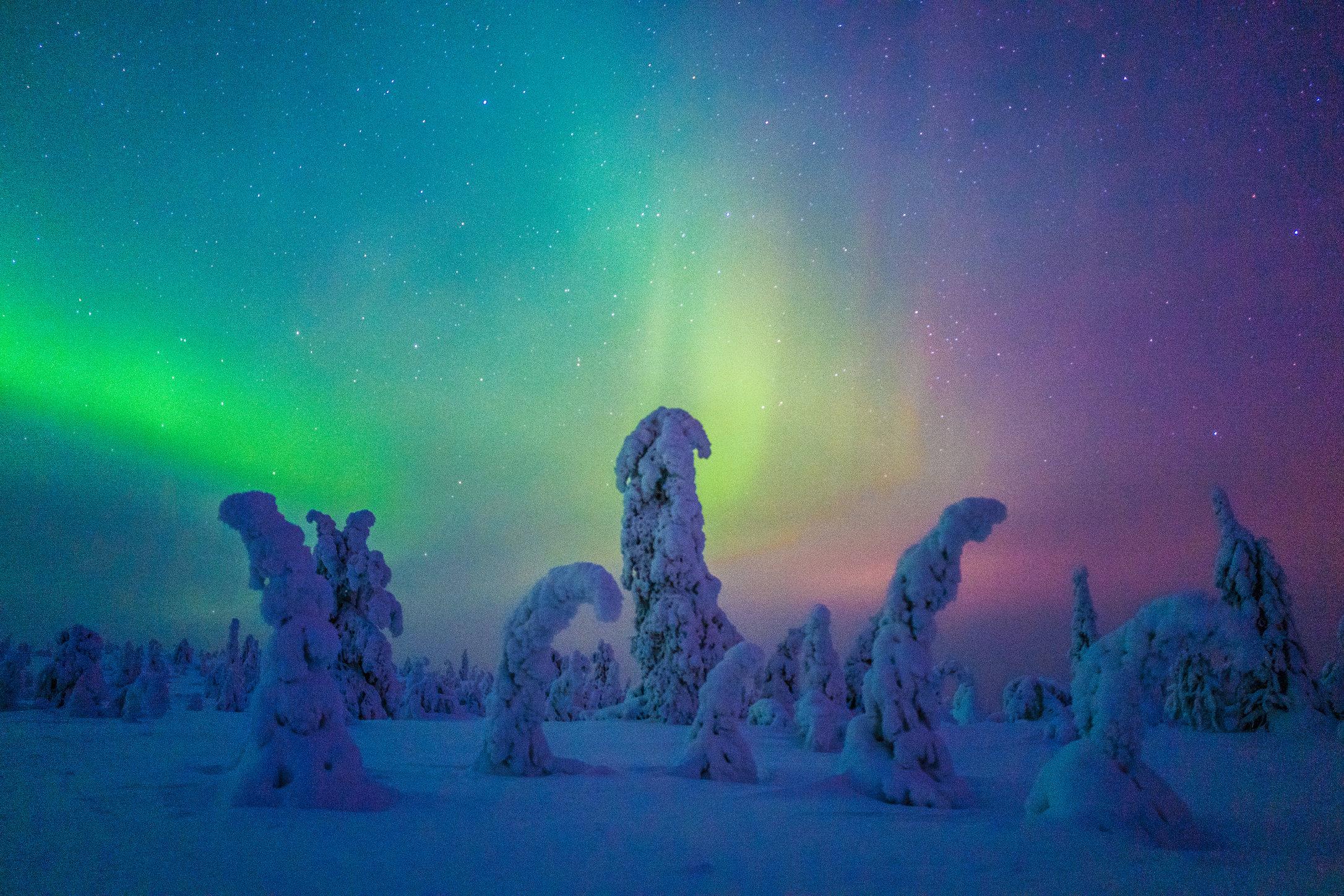 Riisitunturi National Park, Finland. 2016.