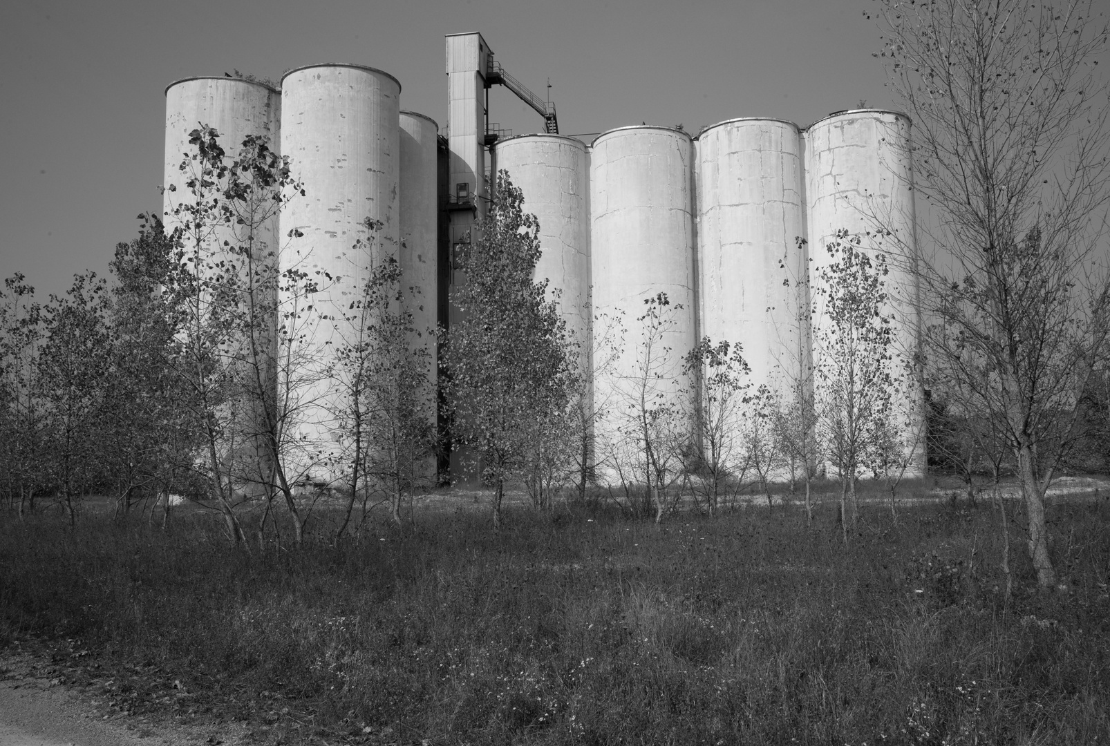 Abandoned Grain Storage