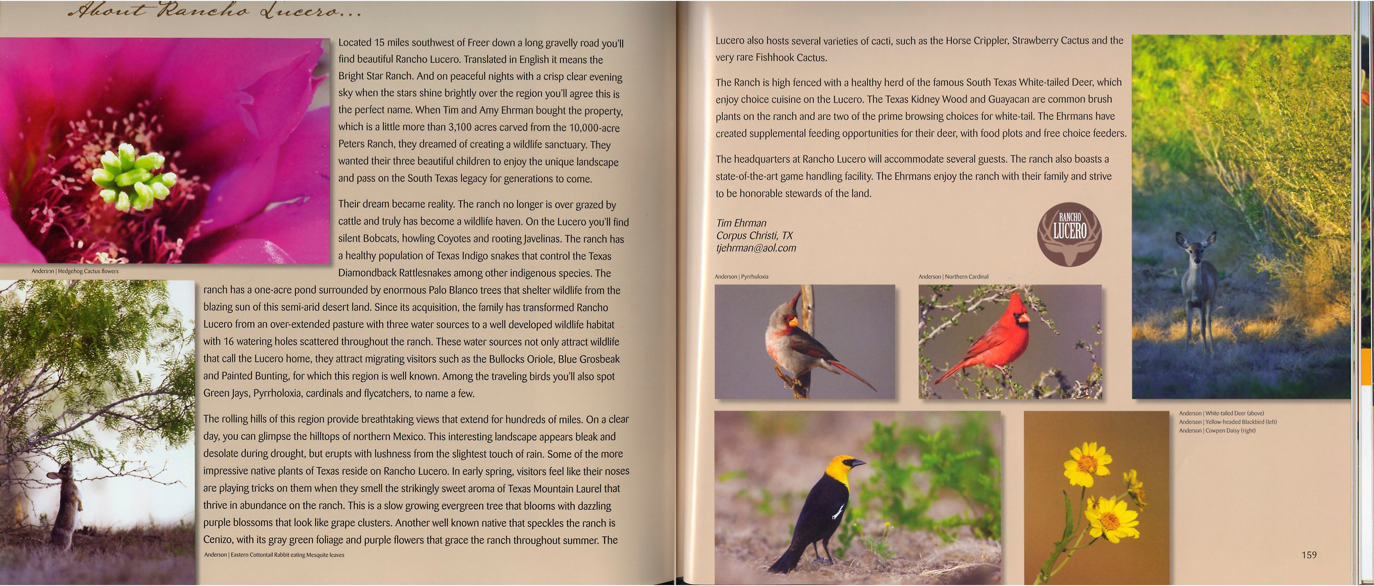 Images For Conservation (coffee table book) ©2009