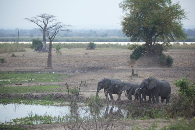 Malawi_017.jpg