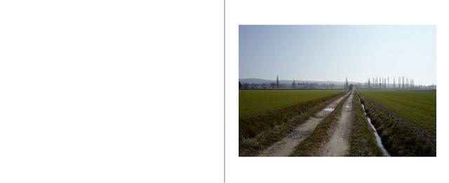 saint_chamas_paysages29.jpg